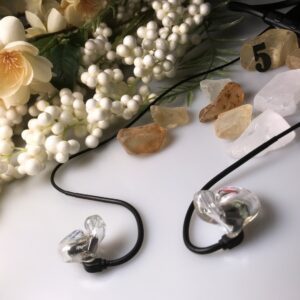 Custom In Ear Monitors